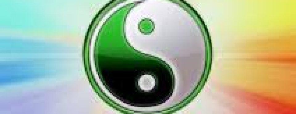 BIONIS za jin – jang ravnovesje v homeostazi