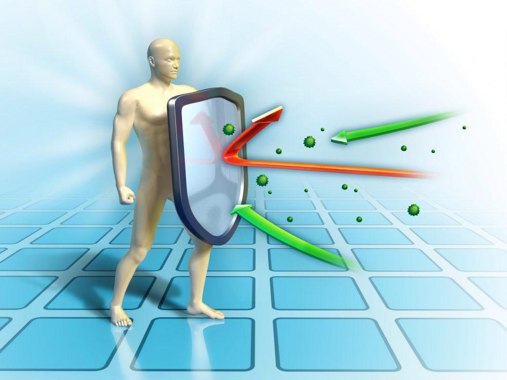 imunski sistem Zaper Zaperino mu pomaga z uničevanjem virusov, bakterij, gliv in parazitov